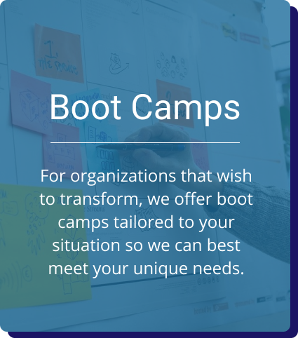 Boot Camps: For organizations that wish to transform, we offer boot camps tailored to your situation so we can best meet your unique needs