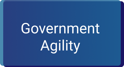 Government Agility